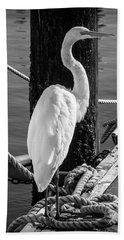 Great White Heron In Black And White Beach Towel by Garry Gay