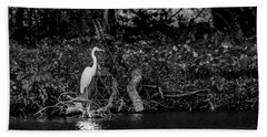 Great White Heron Beach Towel by Ray Congrove