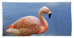 Greater Flamingo Beach Towel by Afrodita Ellerman