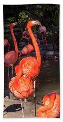 Greater Flamingo Beach Towel