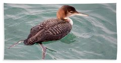 Beach Towel featuring the photograph Grebe In The Water by AJ Schibig