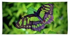 Green And Black Butterfly Beach Towel