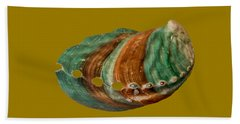 Green And Brown Shell Transparency Beach Sheet