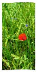 Green Barley, Red Poppy And Blue Cornflower Beach Towel