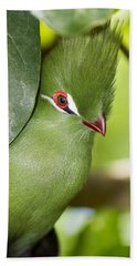 Green Turaco Bird Portrait Beach Towel