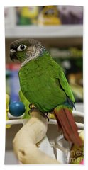 Green Cheek Conure Beach Towel