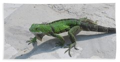 Green Common Iguana Creeping Across A Walkway Beach Towel by DejaVu Designs