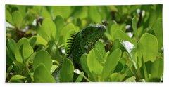 Green Common Iguana In A Shrub Beach Towel by DejaVu Designs