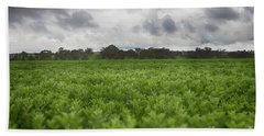 Beach Towel featuring the photograph Green Fields 4 by Douglas Barnard