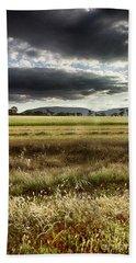 Green Fields 6 Beach Sheet by Douglas Barnard
