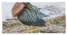 Green Heron 1334 Beach Towel by Tam Ryan