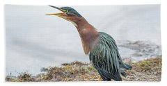 Green Heron 1336 Beach Towel by Tam Ryan