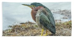 Green Heron 1340 Beach Towel by Tam Ryan