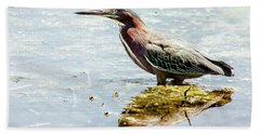 Beach Towel featuring the photograph Green Heron Bright Day by Robert Frederick