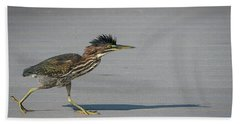 Green Heron On A Mission Beach Sheet