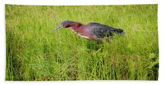 Beach Sheet featuring the photograph Green Heron On The Hunt by Ricky L Jones