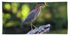 Green Heron Stump Beach Sheet