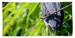 Green Heron Beach Towel by Sumoflam Photography