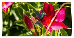 Green Hummingbird Beach Towel
