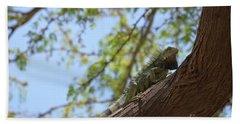 Green Iguana Climbing Up The Trunk Of A Tree Beach Towel by DejaVu Designs