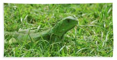 Green Iguana In Thick Grass Beach Towel by DejaVu Designs