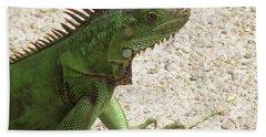Green Iguana On A Pathway Beach Towel by DejaVu Designs