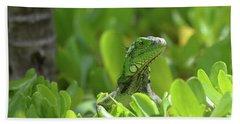 Green Iguana Peaking Out Of A Shrub Beach Towel by DejaVu Designs