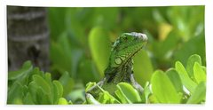 Green Iguana Peaking Out Of A Shrub Beach Sheet by DejaVu Designs