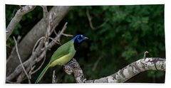 Green Jay Beach Towel