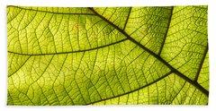 Green Leaf Closeup Beach Sheet