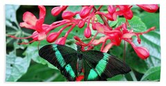 Green Moss Peacock Butterfly Beach Towel