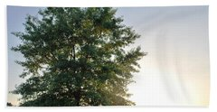 Green Tree Bright Sunshine Background Beach Towel by Matt Harang