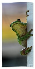 Green Tree Frog  It's Not Easy Being Green Beach Towel