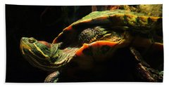 Beach Towel featuring the photograph Slider Turtle by Rosalie Scanlon