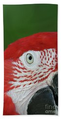 Green-winged Macaw Close Up Beach Towel