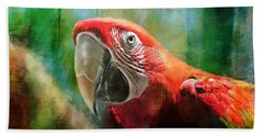 Green Winged Macaw Beach Towel