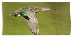 Green-winged Teal 6320-100217-2cr Beach Towel