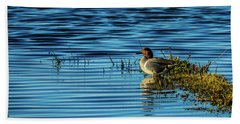 Green-winged Teal Beach Towel