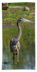 Gret Blue Heron In Pond Beach Towel