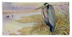 Grey Heron Beach Towel by John James Audubon
