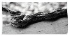 Grey Rat Snake Beach Towel