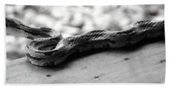 Grey Rat Snake Beach Sheet