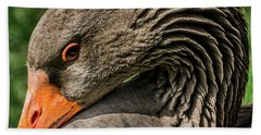 Greylag Goose Portrait  Beach Sheet by Gary Whitton