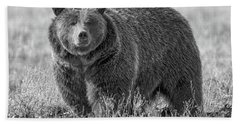 Brutus The Bear Beach Towel
