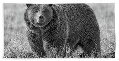 Brutus The Bear Beach Sheet