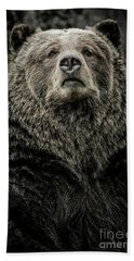 Beach Towel featuring the photograph Grizzly Bear by Brad Allen Fine Art
