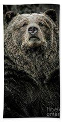Grizzly Bear Beach Towel