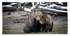 Grizzly Cub Cuddling With Mother Beach Towel