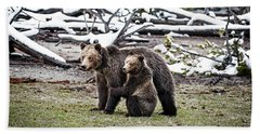 Grizzly Cub Holding Mother Beach Sheet