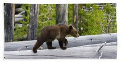Grizzly Cub Beach Towel